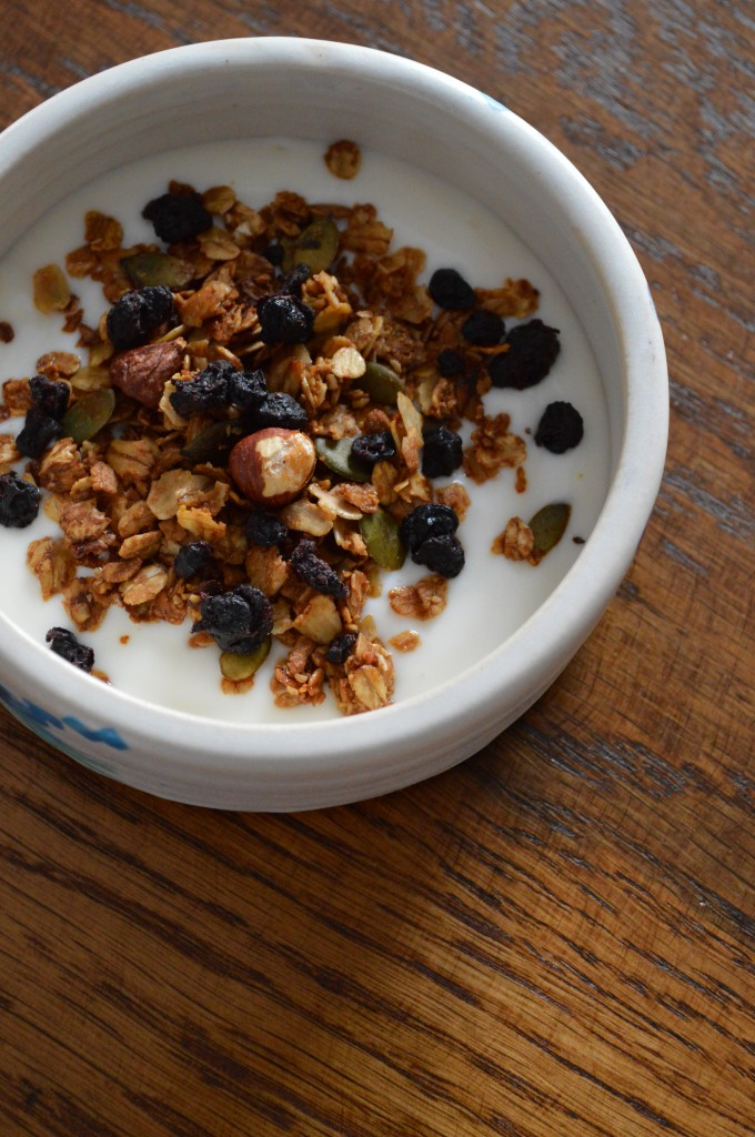 Yogurt and granola with hazelnuts, pumpkinseeds, and dried currants