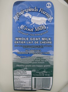 Fairwind Farms goat milk, about to become yogurt