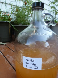 A jug of windfall cider