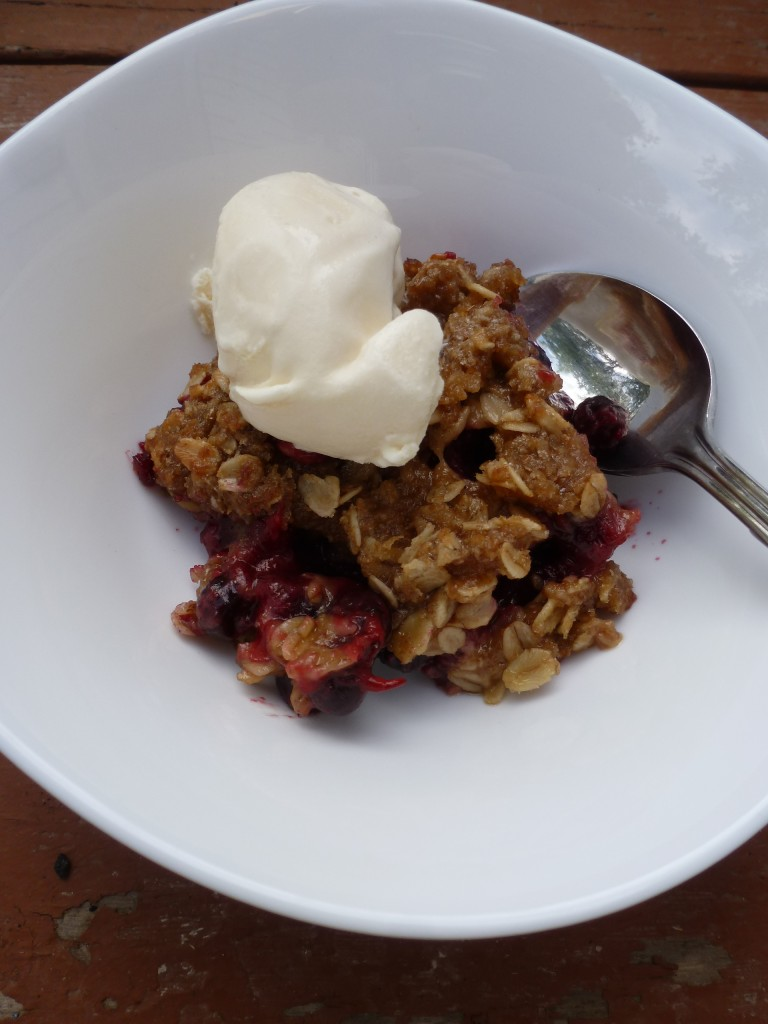 Saskatoon crumble with ice cream