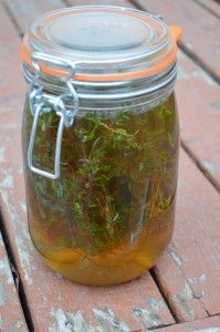 A jar of thyme vinegar.