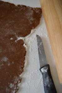 gingerbread_dough.JPG