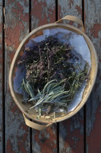 A basket of dried herbs
