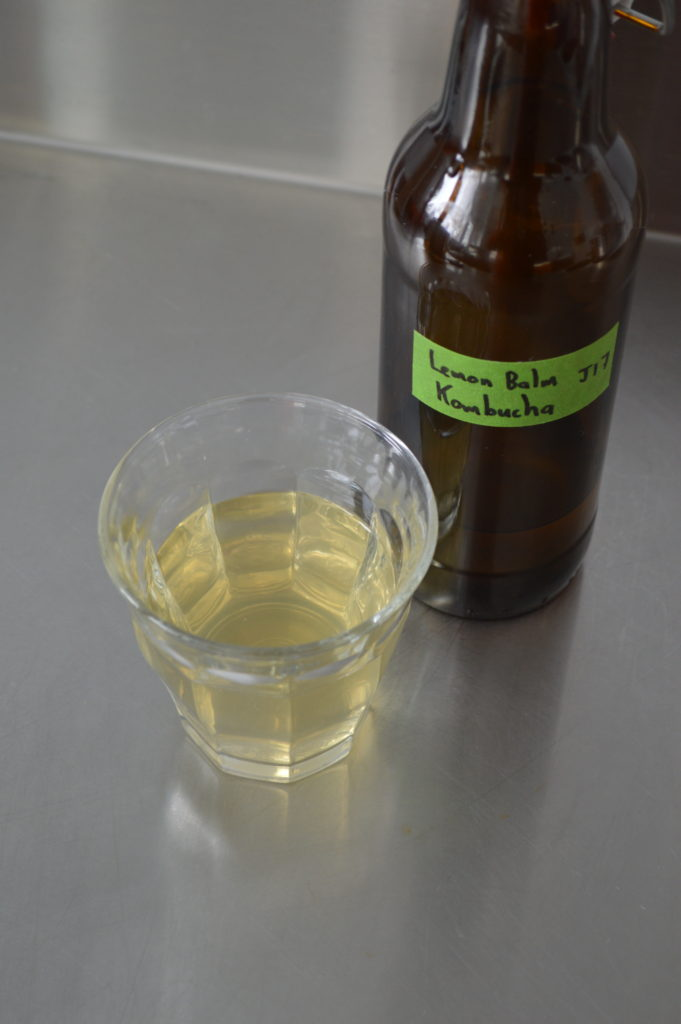 A glass of lemon balm kombucha.