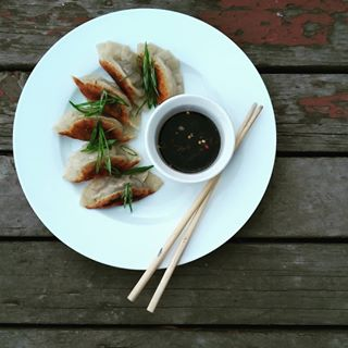 Homemade gyoza, Japanese dumplings filled with pork and cabbage.