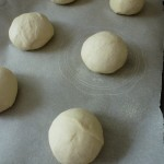 Shaping the English muffin dough into boules for proofing