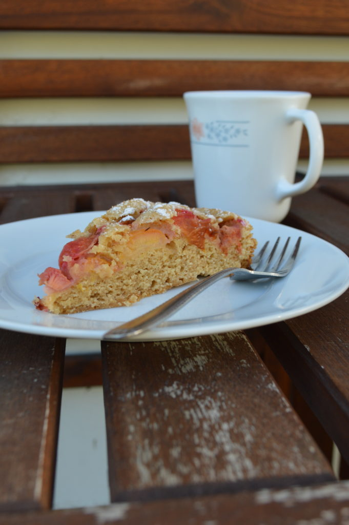 A slice of Austrian fruit cake made with plums.
