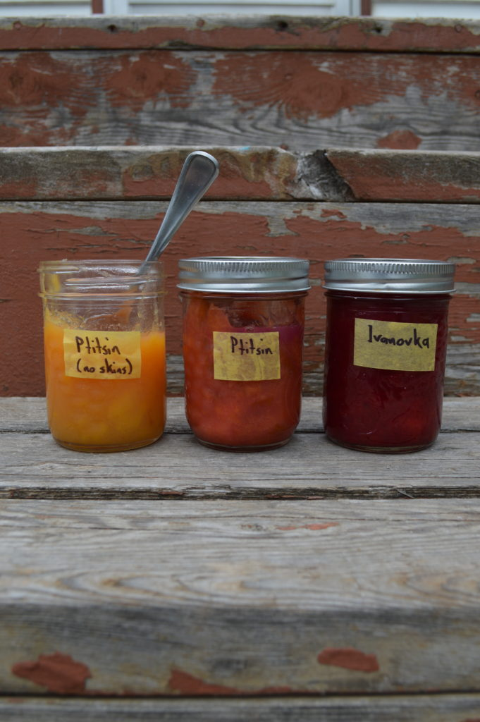 Three types of plum jam made with Japanese plums (Prunus salicina).